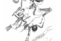 JKR_Quidditch_illustration