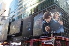 Fantastic beasts where to find billboard007