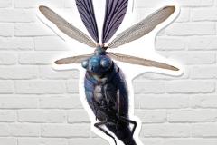 fantastic-beasts-billywig-wall-art-72cm-product-image